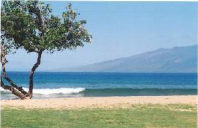 Honokowai vacation rentals Property ID 14596