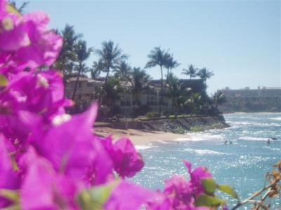 VacationsFRBO Lahaina Vacation Rentals Property ID 14706 Sunset Central