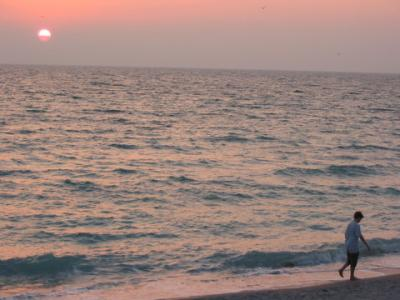 VacationsFRBO Anna Maria Island Vacation Rentals Property ID 16235 Venice Beach Rental