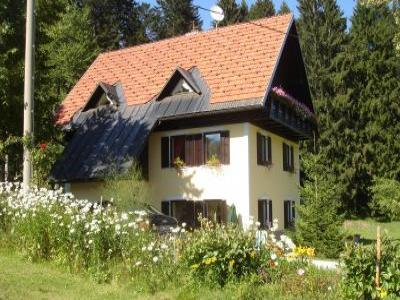 VacationsFRBO Idrija Vacation Rentals Property ID 17744 Idrija Rental