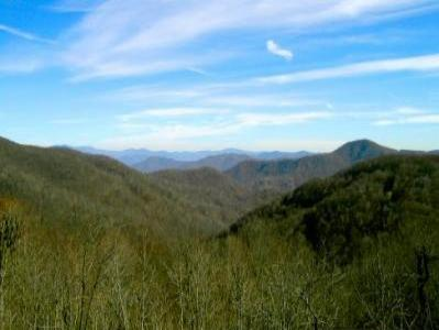 VacationsFRBO Asheville Vacation Rentals Property ID 19490 Asheville Rental