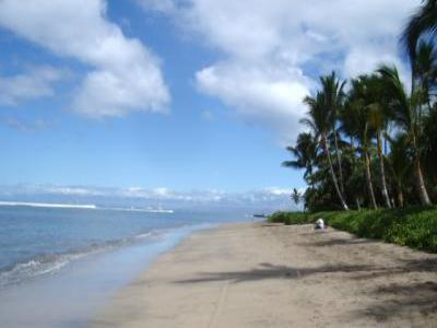 VacationsFRBO Lahaina Vacation Rentals Property ID 22415 Lahaina Shores Hotel Condominium