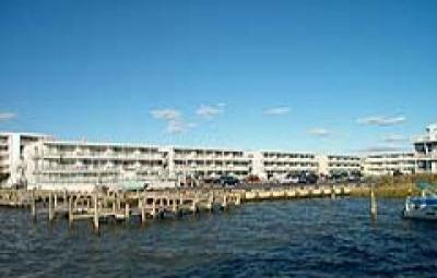 VacationsFRBO Ocean City Vacation Rentals Property ID 24855 Ocean City Rental