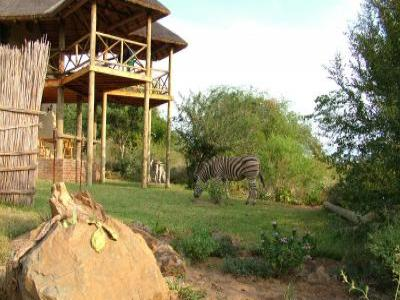Marloth Park vacation rentals Property ID 25183