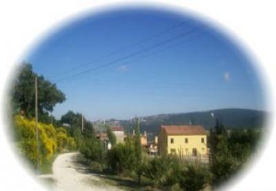 VacationsFRBO Cingoli Vacation Rentals Property ID 27555 Ziamelia