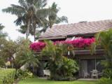 VacationsFRBO.com vacation rentals Property ID 31056