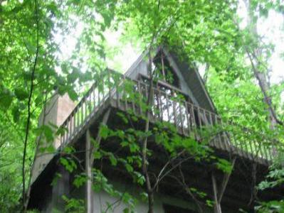 VacationsFRBO Asheville Vacation Rentals Property ID 35576 Pet and family friendly mountain cabin near Asheville: NC